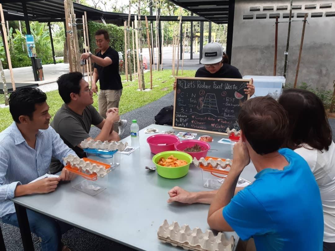 Black Soldier Fly Composting Workshop at Taman Tugu