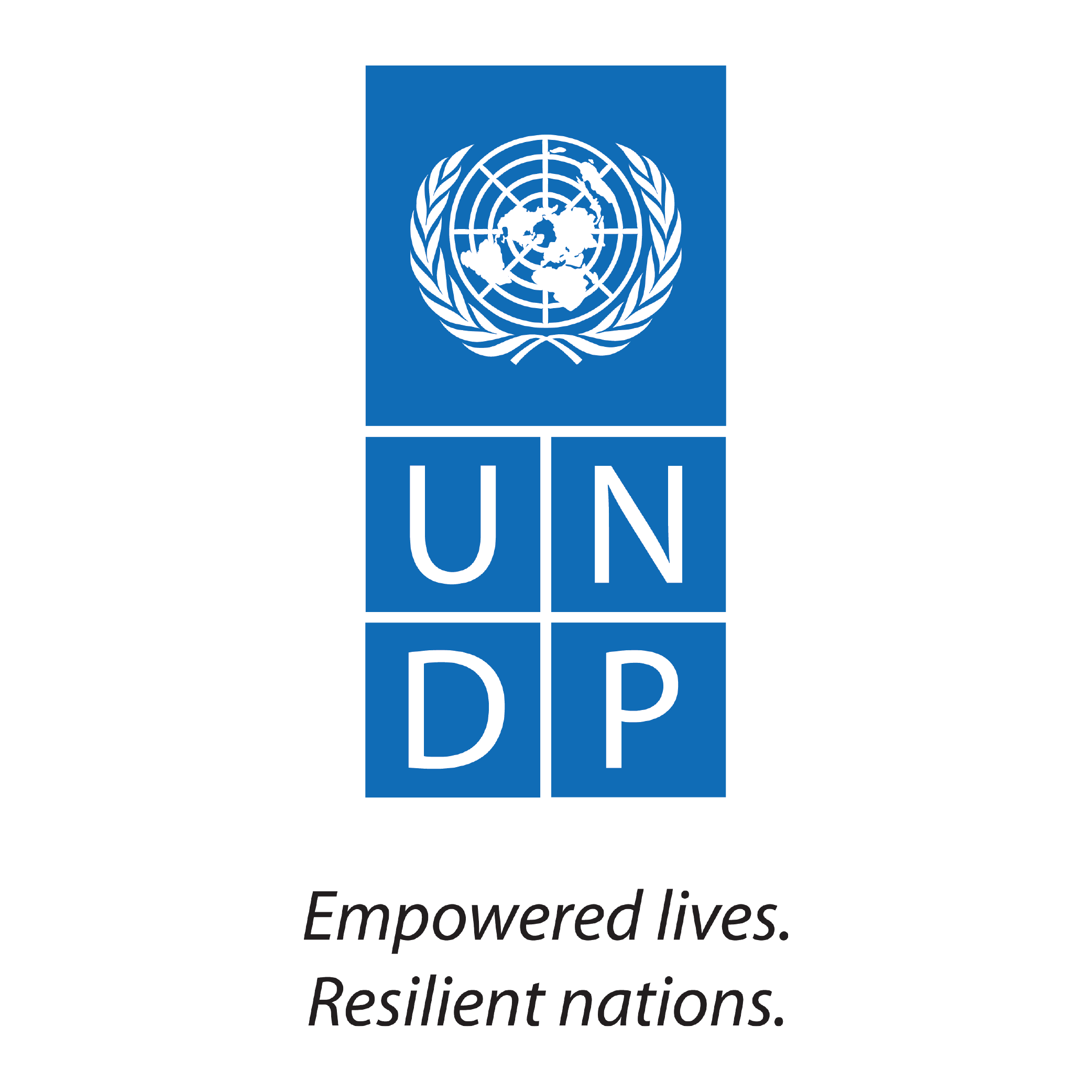 200219_ logo for website_UNDP