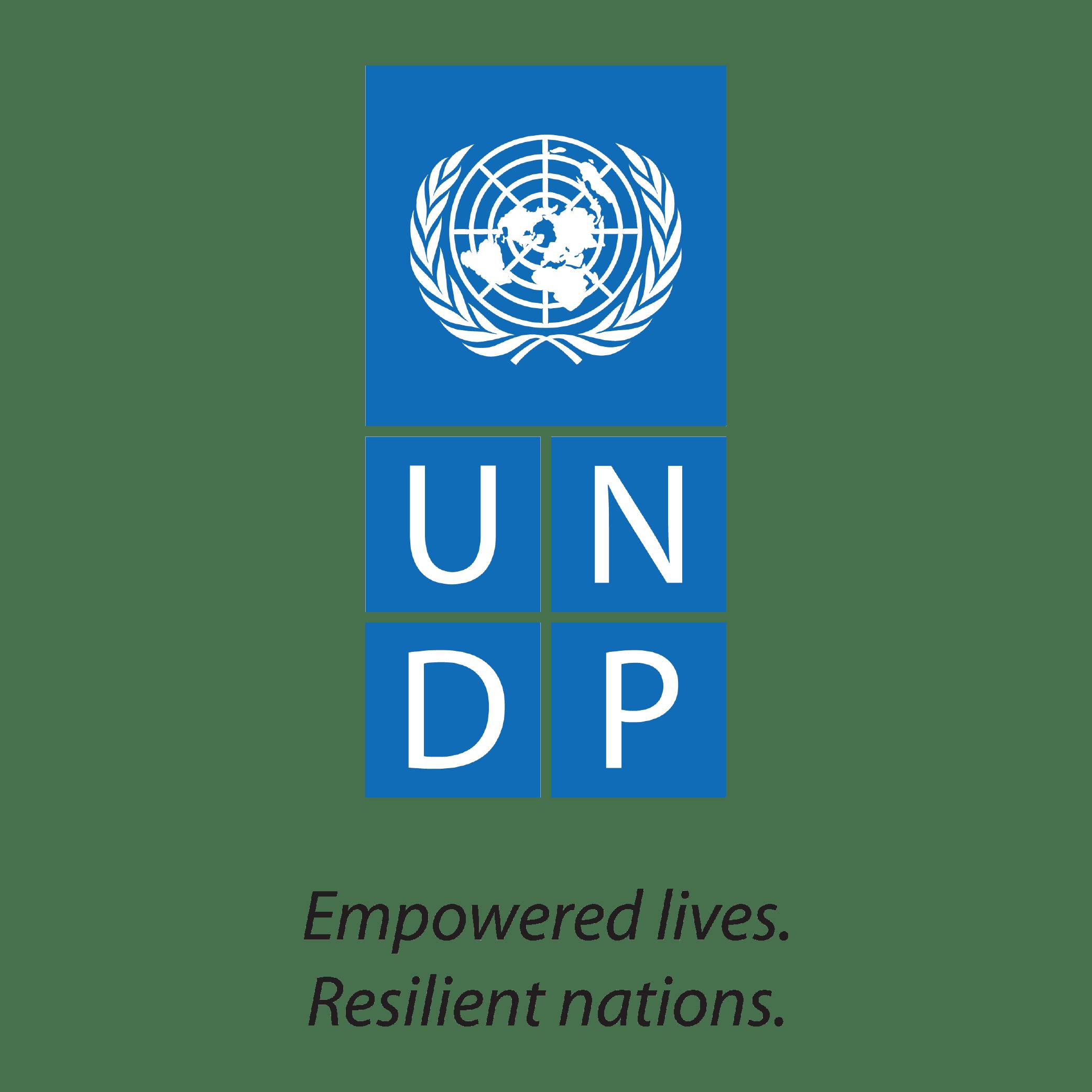 200219_ logo for website_UNDP